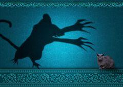 Die Mimo-Katze