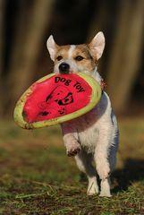 Die mit der Frisbee tanzt