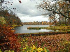 Die Moorlake im Herbst