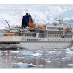 Die MS BREMEN vor Neko Harbour