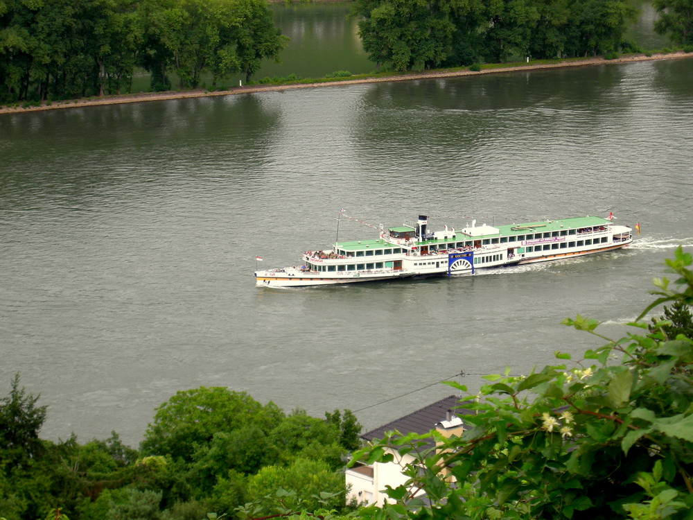Die MS Goethe auf dem Rhein