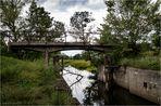 Die Mückenbrücke
