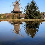 Die Mühle Sanssouci im Spiegel