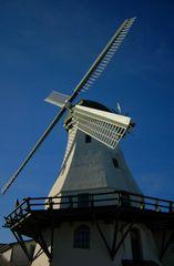 die Mühle vom Landarzt
