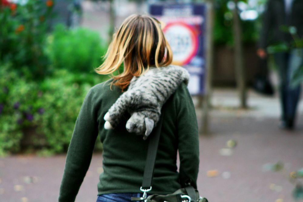 Die Muschi Trägerin Foto & Bild | streetfotografie, street