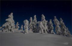 Die Nacht in Lappland