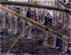 Die nächste Eiszeit kommt bestimmt