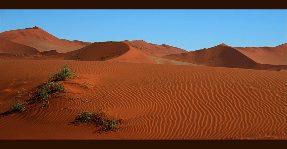 Die Namib