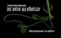 Die Natur als Künstler - Titelvorschlag
