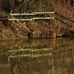 die Natur im Februar am Neckarufer