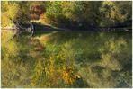 Die Natur spiegelt unser Tun: ...einfach lassen...! (mit Kompositions-Analyse !)