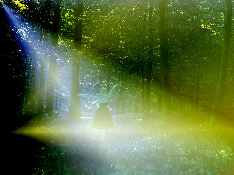 Die Nebel der Aulisburg