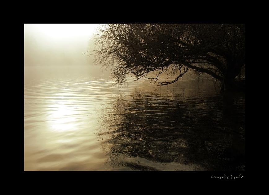 Die Nebel vom Kaltental (2)