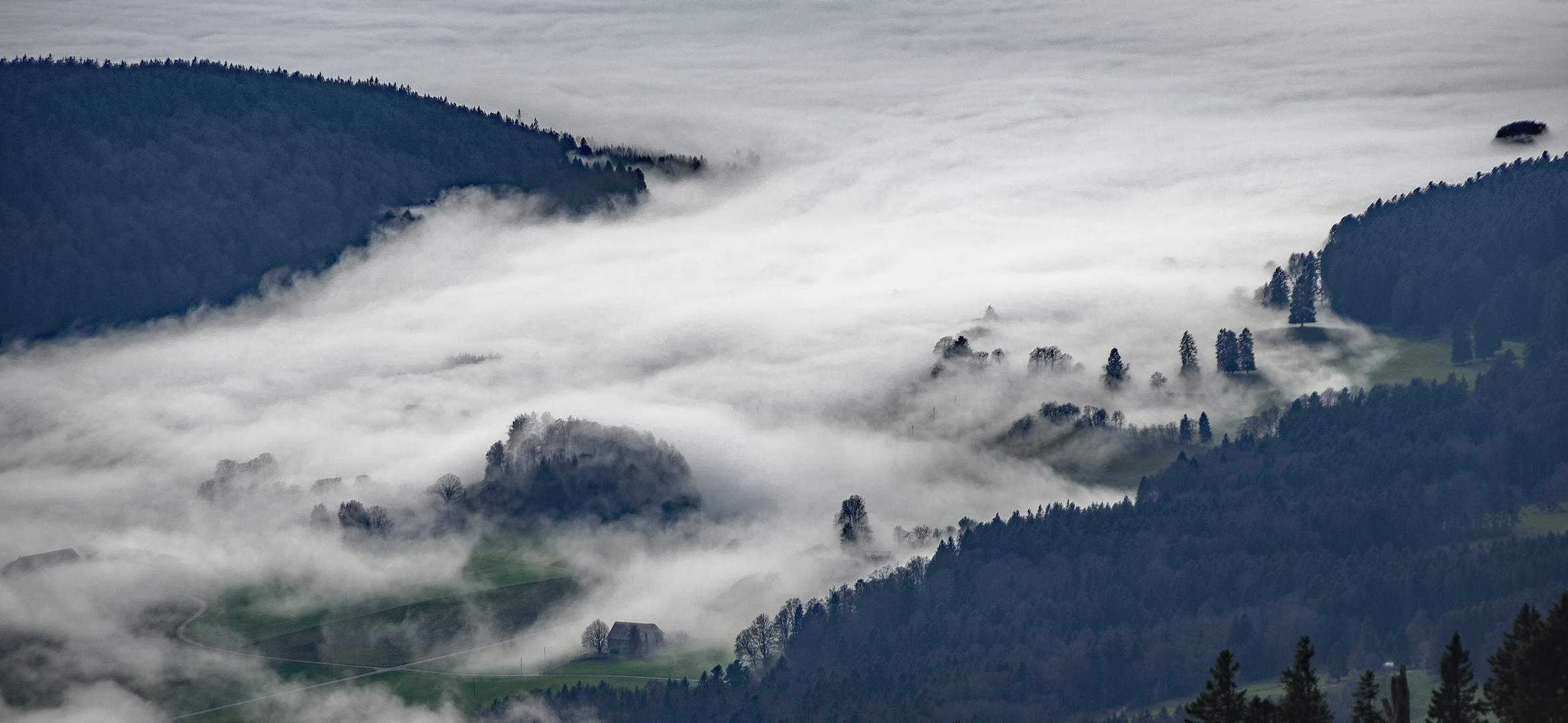 Die Nebelgrenze