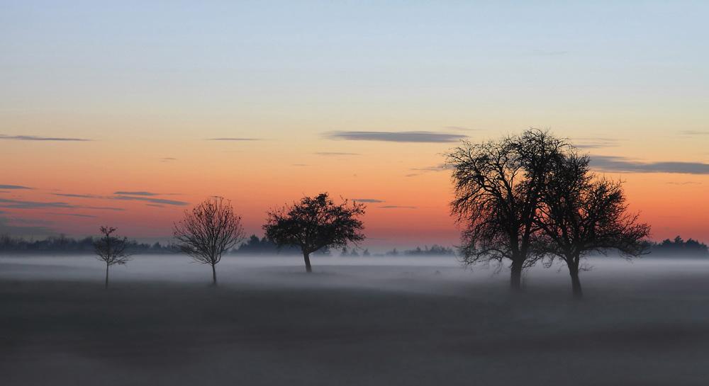 Die Nebelungen - Reloaded
