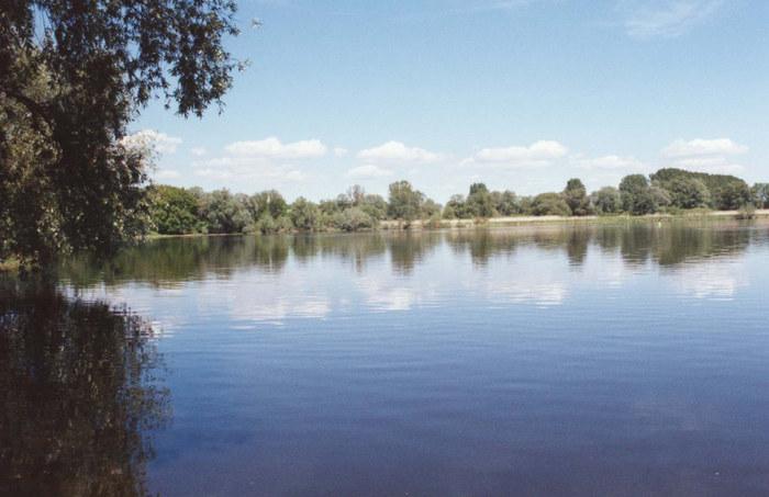 Die Oder bei Gieshof - Zelliner Loose