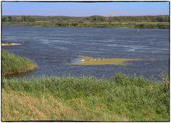 Die Oder bei Groß Neudorf
