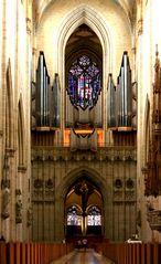 Die Orgel im Ulmer Münster