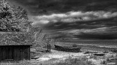 Die Ostsee bei Zingst
