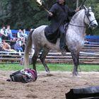 Die Pest kommt zu Pferde