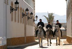 Die Pferde für die heiligen 3 Könige