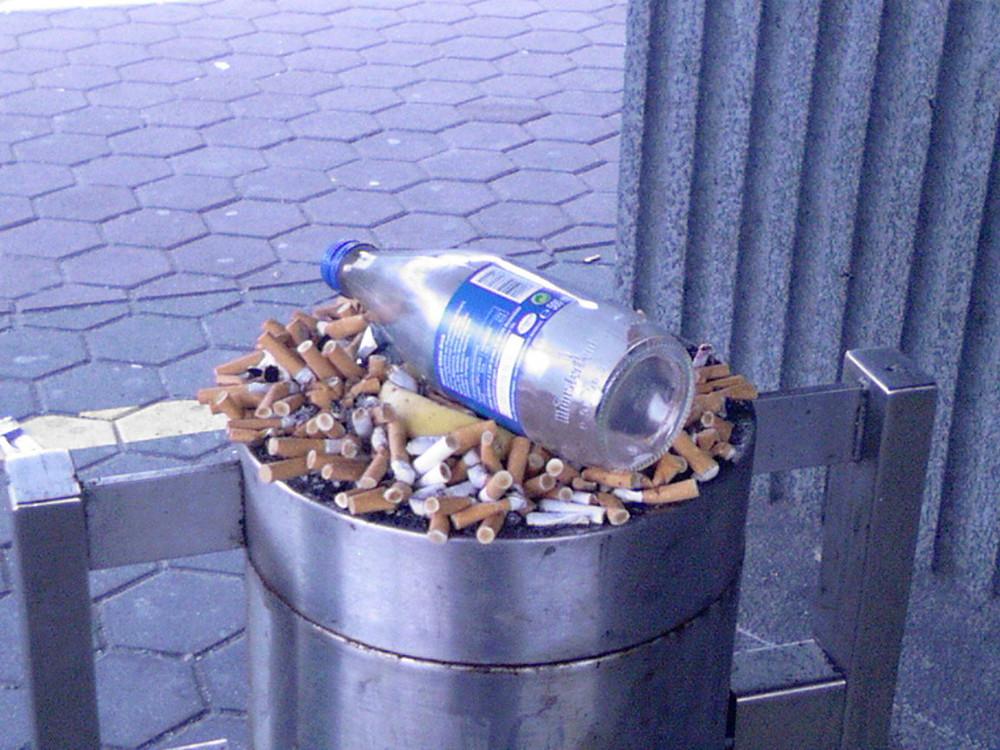 die raucher