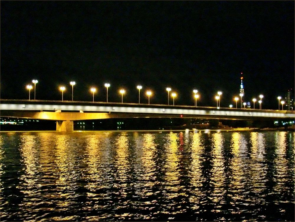 die Reichsbrücke in Wien