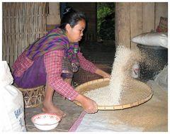 Die Reisfrau