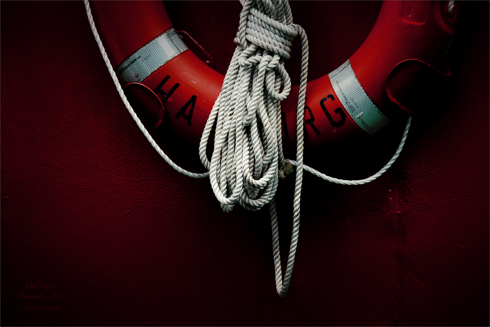 Die Rettung (3)