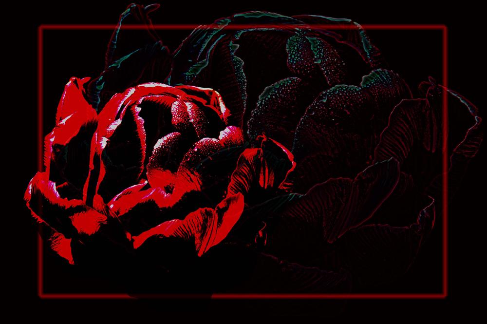 ...die rote Farbe