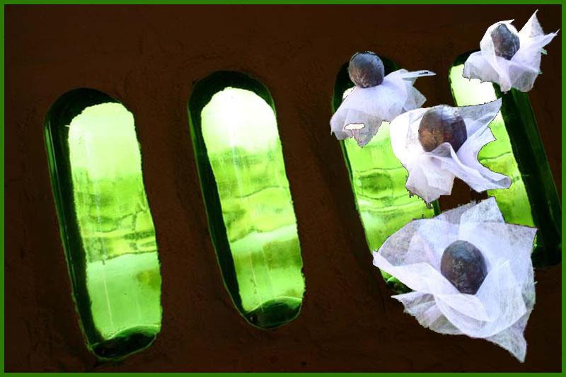 Die rote Kohlbräute wollen aus der grünen Höhle fliehen...