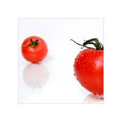 die rote Tomate
