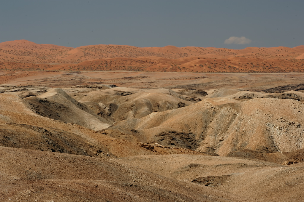 """Die rote und die weisse Namib -"""" the red and the white"""" Namib"""