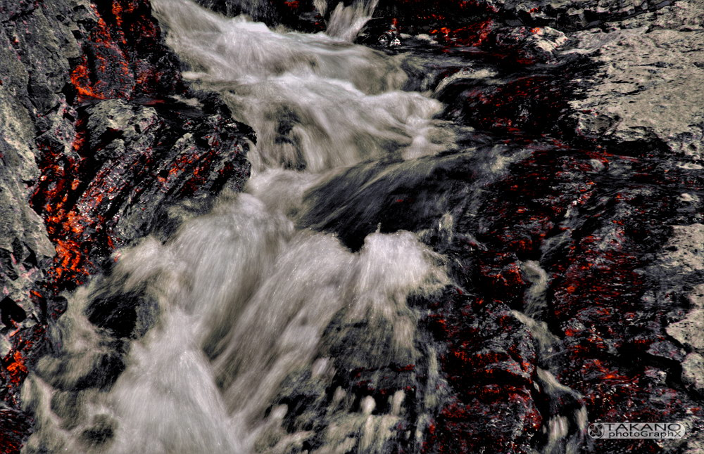 Die Roten Flüsse (ach, eigentlich ja purpur...)