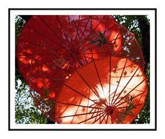 Die roten Schirme