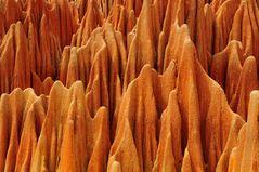 """Die """"roten Tsingys"""" in Madagaskar"""