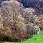 die Rückfahrt führt über Slovenien auch hier zeigt sich der Herbst