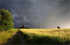 Die Ruhe vor dem Sturm...