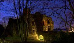 Die Ruine der Kaiserpfalz 4