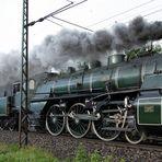 Die S 3/6 inmitten der Nördlinger Fuhre