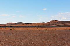 Die Sahara bei Tafraout Hassi Fougani im Süden Marokkos