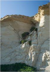Die Salzpfannen-Küste