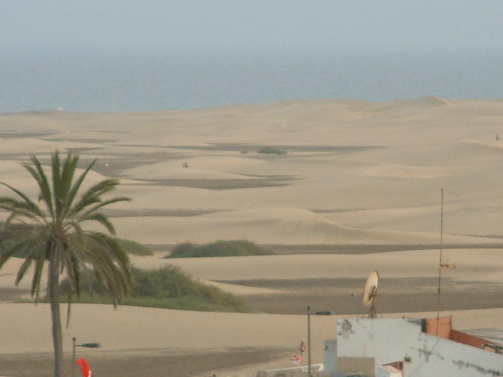 Die Sanddünen Gran Canarias