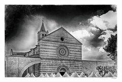 - die Schäflein von Assisi -