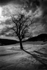 Die Schattenseiten des Winters