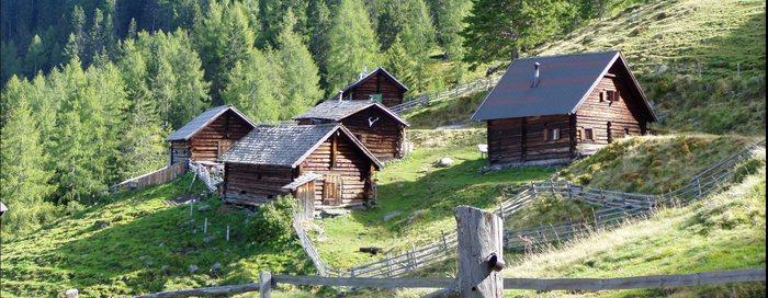 Die Schladminger Alm im Sattental (Österreich/Ennstal)