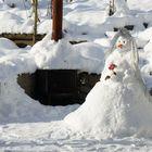 Die Schneebraut