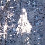 Die Schneefrau