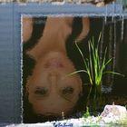 Die schöne im Wasser