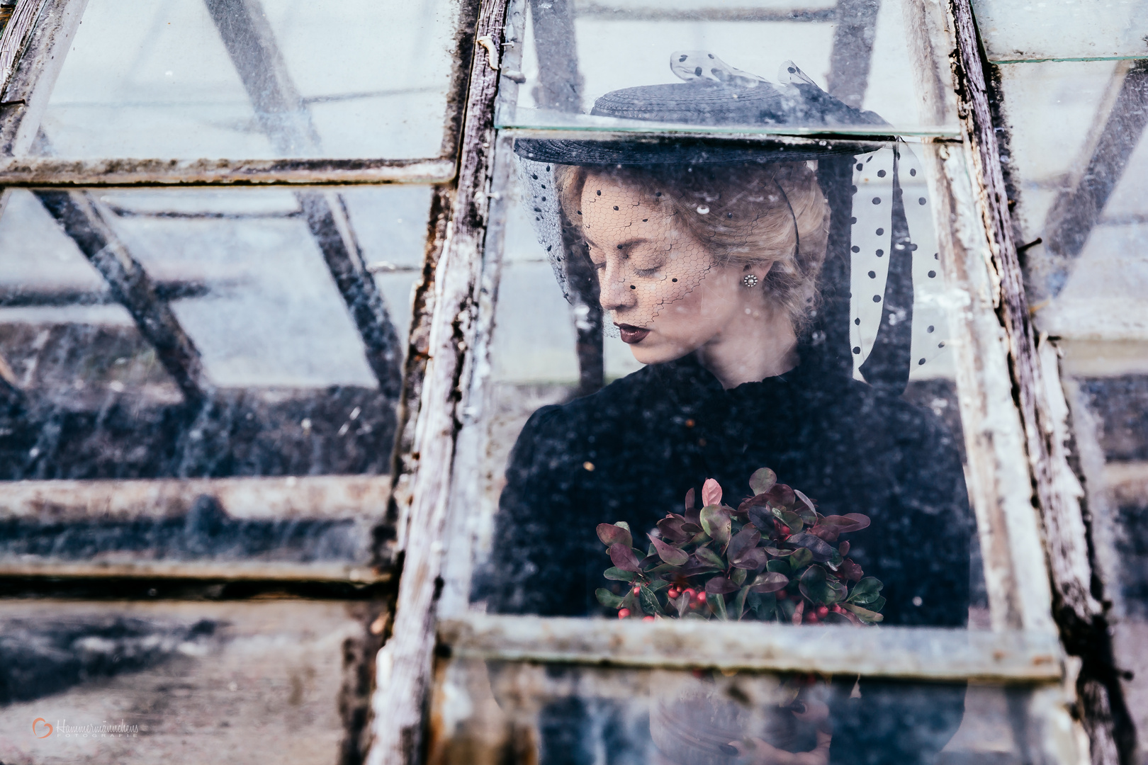 Die schöne Witwe